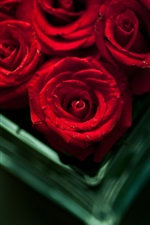 Red flowers, bouquets, roses, vase, bokeh