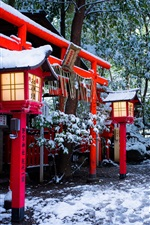 Preview iPhone wallpaper Shrine, Torii gate, Kyoto, Japan, winter, snow, trees