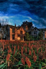 Preview iPhone wallpaper Sorghum fields, countryside, house, clouds, dusk