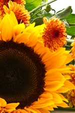 Preview iPhone wallpaper Sunflower and chrysanthemum, yellow flowers