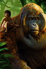 Preview iPhone wallpaper The Jungle Book 2016, boy and gorilla