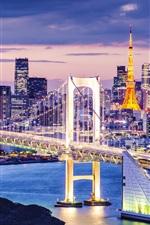 Preview iPhone wallpaper Tokyo, Japan, beautiful city night, skyscrapers, bay, bridge, illumination