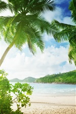 Preview iPhone wallpaper Tropical beach, palm trees, sand, sea, coast, clouds