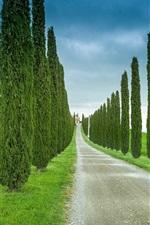 iPhone fondos de pantalla Toscana, Italia, carreteras, hierba, ciprés