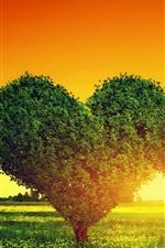 미리보기 iPhone 배경 화면 두 사랑의 마음 나무, 잔디, 일몰