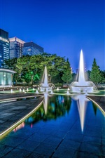Wadakura Fountain Park, Japan, Tokyo, beautiful night, city, skyscrapers, lights