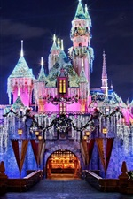 Preview iPhone wallpaper Wonderful Disneyland, amazing castle, beautiful lights, California, USA