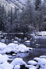 Preview iPhone wallpaper Yosemite National Park in winter, Merced River, snow, California, USA