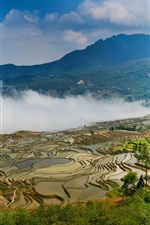Preview iPhone wallpaper Yuanyang terraces, China Yunnan, beautiful view, fog, mountains