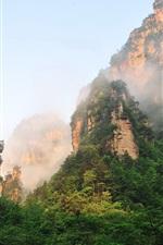 Preview iPhone wallpaper Zhangjiajie beautiful mountain scenery, cliffs, fog, forest, China