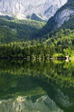 Preview iPhone wallpaper Austria, Gruner, lake, mountains, trees, houses, water reflection