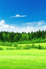 Preview iPhone wallpaper Beautiful nature landscape, field, green grass, trees