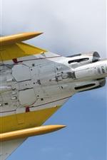 미리보기 iPhone 배경 화면 C-408 항공기 비행