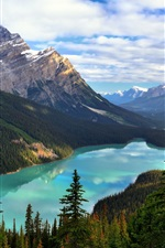 Preview iPhone wallpaper Canada, Alberta, Banff National Park, Mount Patterson, Peyto Lake, trees, clouds