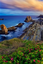 Preview iPhone wallpaper Costa Quebrada, Cantabria, Spain, Biscay Bay, flowers, rocks, sunset
