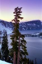 Crater Lake, snow, trees, Klamath County, Oregon, USA