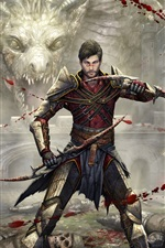 Preview iPhone wallpaper Dragon Age, PC game