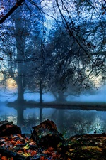 Preview iPhone wallpaper England, London, Morden Hall Park, trees, river, fog, autumn, dawn