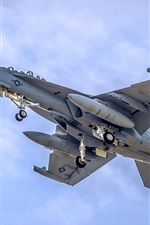 Preview iPhone wallpaper F-18 Fighter flight in sky