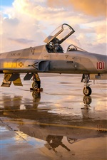 Preview iPhone wallpaper F-5N Tiger II fighter aircraft