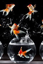 Preview iPhone wallpaper Goldfish dance, jump, water splash