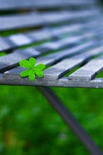 Preview iPhone wallpaper Green leaf, bench, bokeh, macro photography