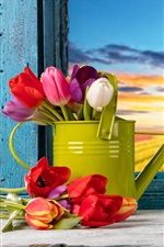 Happy Easter, colorful eggs, decoration, spring, tulip flowers, window