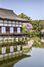 Preview iPhone wallpaper Heian Jingu, Kyoto, Japan, flowers, pond, spring
