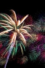 미리보기 iPhone 배경 화면 휴일 불꽃 놀이, 하늘, 밤
