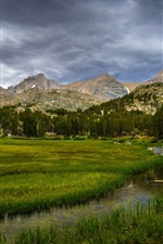 Preview iPhone wallpaper Inyo National Forest, California, USA, trees, grass, mountains, clouds