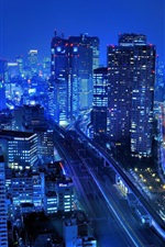 Japan, city, skyscrapers, buildings, night, lights, blue style