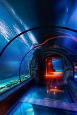 Preview iPhone wallpaper Ocean Park, aquarium, underwater sightseeing passage