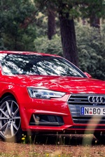 Preview iPhone wallpaper Red Audi A4 Sedan, forest, grass