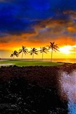 Seashore belo pôr do sol, nuvens, palmeiras, ondas do mar, salpicos