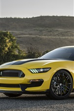 Preview iPhone wallpaper Shelby Ford Mustang GT350 yellow car