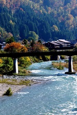 Shirakawa-go, Japan, village, river, bridge, mountain, trees
