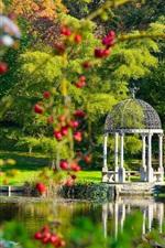 Preview iPhone wallpaper Springhead Gardens, England, park, lake, gazebo, trees, berries