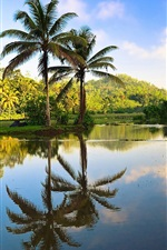 Preview iPhone wallpaper Sri Lanka beautiful nature, trees, palms, water reflection