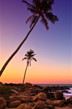 Preview iPhone wallpaper Sri Lanka sunset, sea, coast, beach, rocks, palm trees
