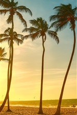 Preview iPhone wallpaper Tropical beach beautiful sunset, palm tree, sea, people, dusk