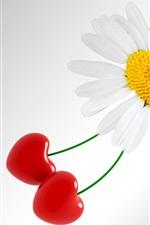 미리보기 iPhone 배경 화면 흰색 데이지 꽃과 체리, 사랑의 마음