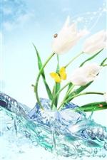 미리보기 iPhone 배경 화면 흰색 튤립 꽃, 얼음, 물, 나비, 창조적 인 디자인