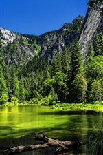 Preview iPhone wallpaper Yosemite National Park, California, USA, lake, green trees, mountain