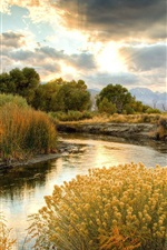 Preview iPhone wallpaper Autumn scenery, nature, yellow grass, river, trees, clouds