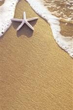 미리보기 iPhone 배경 화면 해변, 모래, 불가사리, 물, 파도