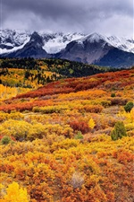 Preview iPhone wallpaper Beautiful autumn nature landscape, trees, mountains, clouds