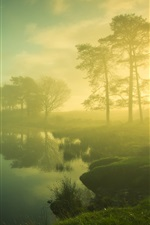 Preview iPhone wallpaper Beautiful dawn scenery, trees, lake, mist, sunrise, blurry