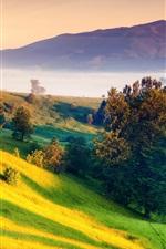 Preview iPhone wallpaper Beautiful nature landscape, sunrise, dawn, hills, green, trees