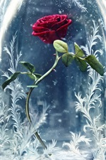 Preview iPhone wallpaper Beauty and the Beast 2017