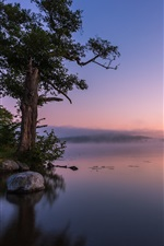Preview iPhone wallpaper Calm lake, fog, rocks, trees, morning